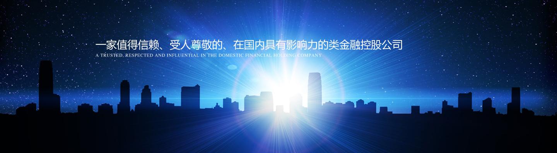 正奇安徽金融控股有限公司